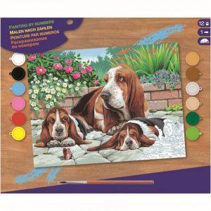 Schilderen op Nummer Basset Honden
