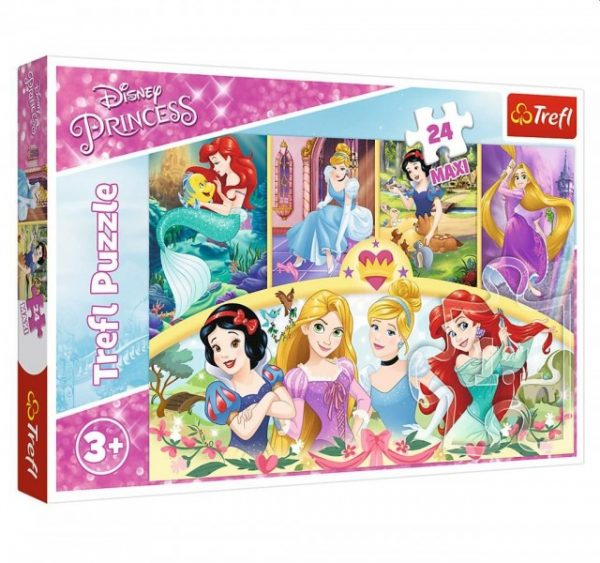 Trefl Puzzel Maxi Princess Magic of Memo (24)